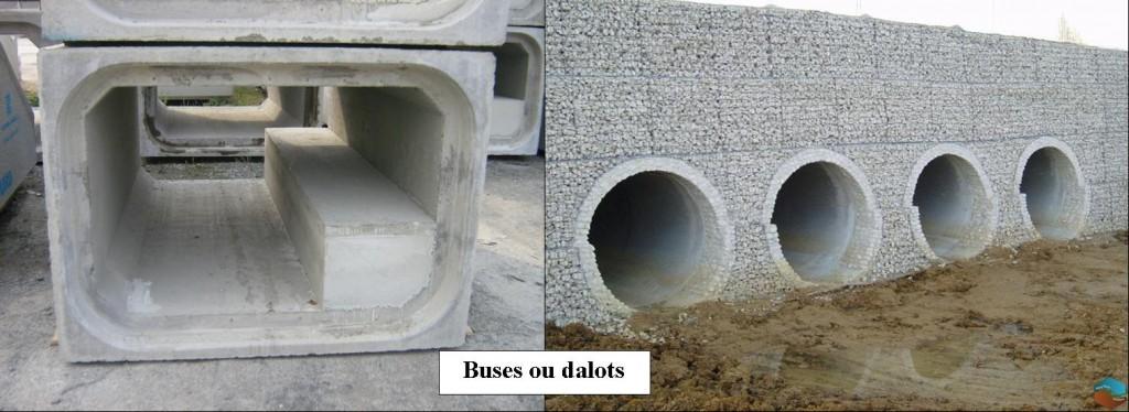 buses-dalots