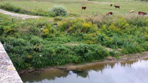 Varesnes crues de l'Oise : Quid ?